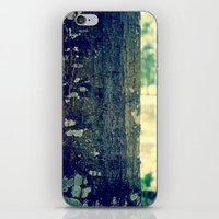 TreeBark iPhone & iPod Skin