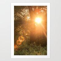 Summer's Coming Art Print