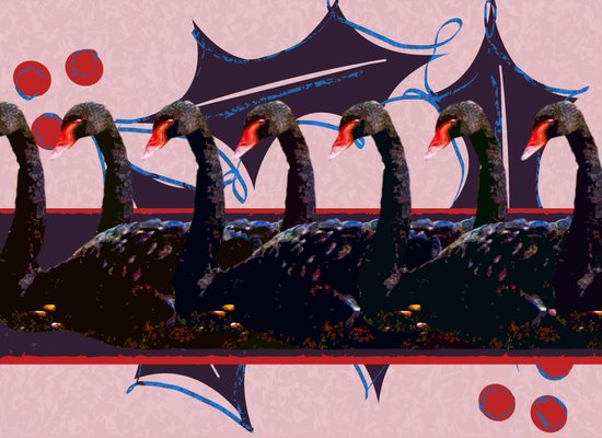 7 Swans-a-Swimming - 12 Days of Christmas Series Art Print