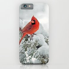 Cardinal On Snowy Branch iPhone 6 Slim Case