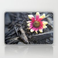 Fallen Flower Laptop & iPad Skin