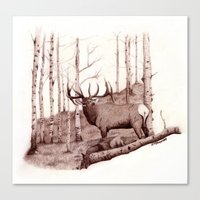 Quakies Canvas Print