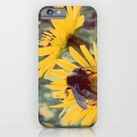 The Beez Knees iPhone 6 Slim Case