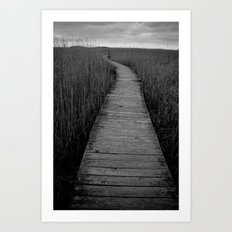 Another Path Art Print