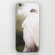 Wild Heart, No. 1 iPhone & iPod Skin