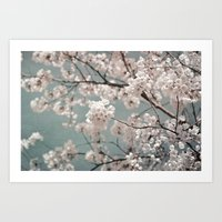 a sky full of blossoms Art Print