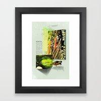 Red-Eared Turtle Framed Art Print