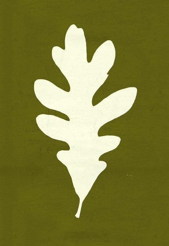White Oak Canvas Print
