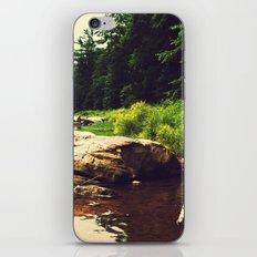 Clear As Mud iPhone & iPod Skin