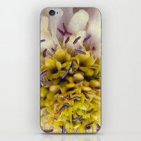Flower Purple Yellow iPhone & iPod Skin