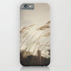 Wild Oats to Sow iPhone 6 Slim Case