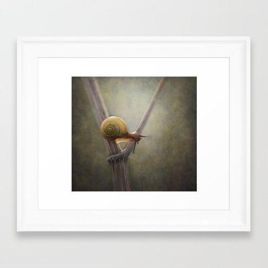 ' Y ' Framed Art Print