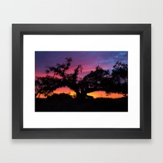 SunseT at the Tree of Knowledge Framed Art Print
