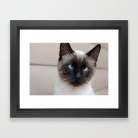Are you looking at me? Framed Art Print