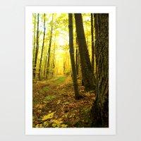 Autumnal Pathway Art Print