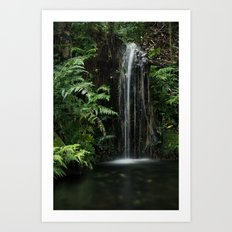 Mini  Waterfall Art Print