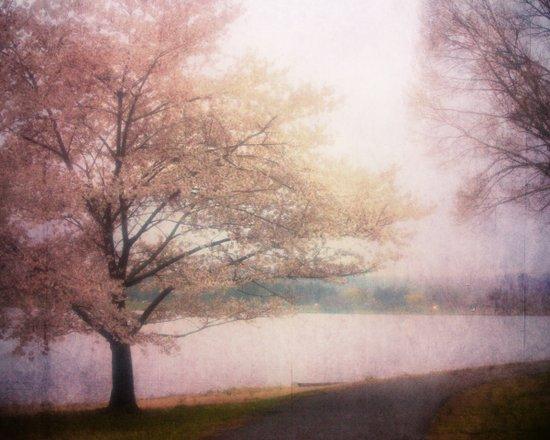 Dream of a Tree Art Print