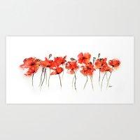 Remember me _ Poppies Art Print