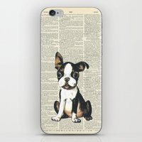 Boston Terrier Vintage Puppy iPhone & iPod Skin