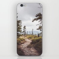 Over the mountains and through the woods iPhone & iPod Skin