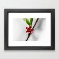 Red peach blossom Framed Art Print