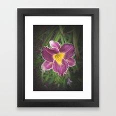 Lily Wild Framed Art Print