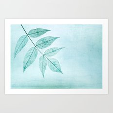 blue fall Art Print