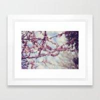 Niagara Blossoms Framed Art Print