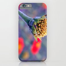 Here we are Slim Case iPhone 6s