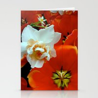 Orange And White Flowers Stationery Cards