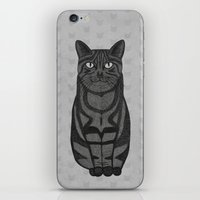 Sly Cat iPhone & iPod Skin