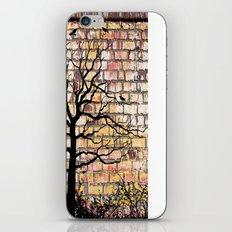 Graffiti Tree iPhone & iPod Skin