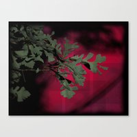 Tree Branch In Red Sunset Canvas Print