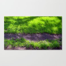 Shaded Grass Canvas Print