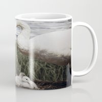 Tom Feiler Swan and her Cygnets Mug