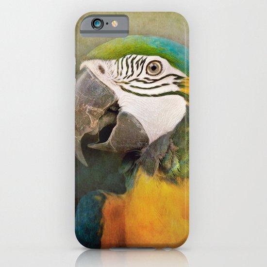 Portrait of a Parrot iPhone & iPod Case