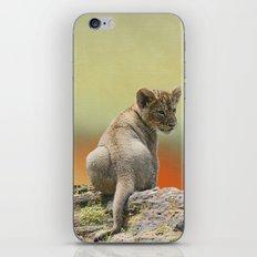 Lion Cub King iPhone & iPod Skin