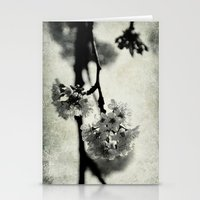 Momentarily Stationery Cards