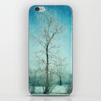 Winter Frost iPhone & iPod Skin