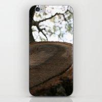 Nature Cracked iPhone & iPod Skin