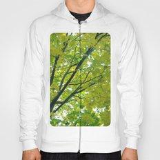 Lush ~ yellow-green leaves 4 U! ~ summer tree Hoody
