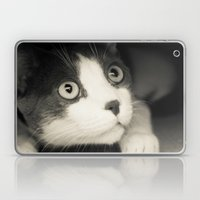 What Do You Think Mr Cat… Laptop & iPad Skin