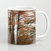 Autumn In The Woods 3 Mug