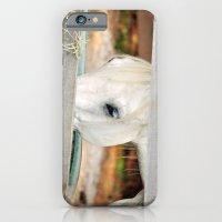 A Glimpse iPhone 6 Slim Case