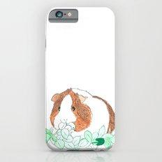Guinea Pig Clover Slim Case iPhone 6s