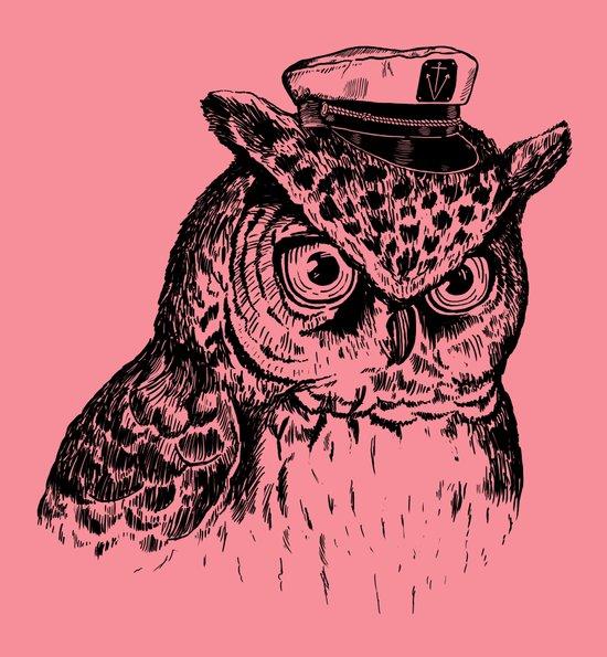 Captain Owl Art Print