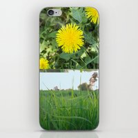 Grass Dandy iPhone & iPod Skin