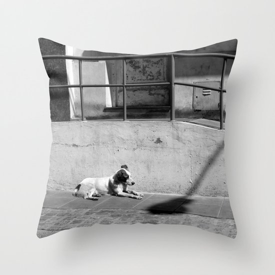 Stray Dog Throw Pillow