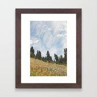 Mountain Flowers in the Sun Framed Art Print