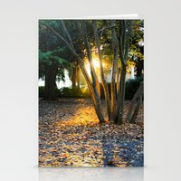 What Light Stationery Cards